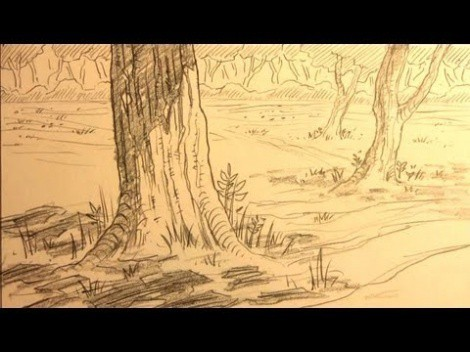 How To Draw A Manga Forest Background In Pencil